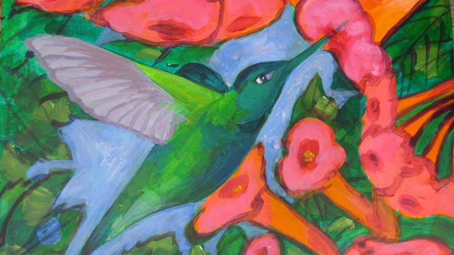 hummingbird