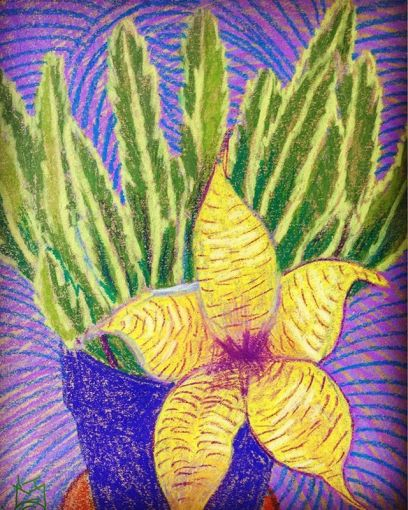 """""""Cactus Flower""""....so bizarre...I've never seen one like this...it blooms for a day & then it's gone.... Day 268  8.5""""X11""""'/wcCrayon"""