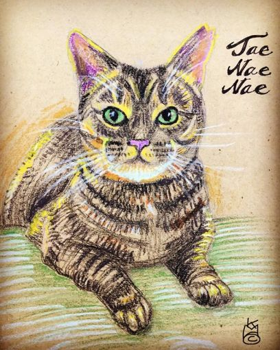 """""""Another Beloved Kitty""""  Day 272.... 8.5x11""""/WCcrayon Portraits"""
