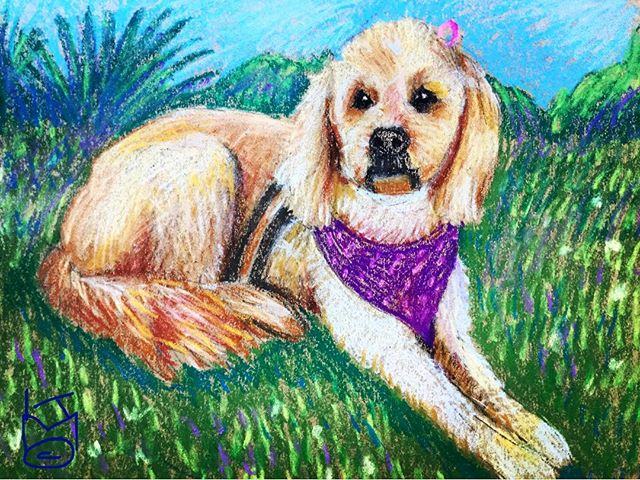 """""""Kylie"""" is sorely missed... she was one of the sweetest & friendliest dogs ever... Day 275"""