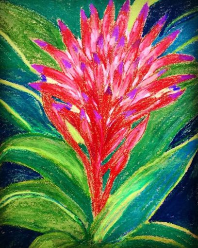 """""""Bromeliad Beauty""""... Day 278... I've drawn them before but could not resist another go...they are so strangely lovely... 8.5x11""""/wcCrayon"""