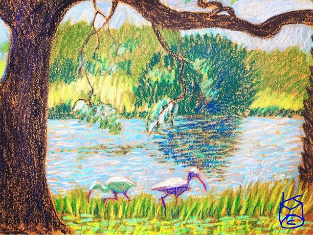 """Curlews Dining"".... Day 308... 8.5x11""/"