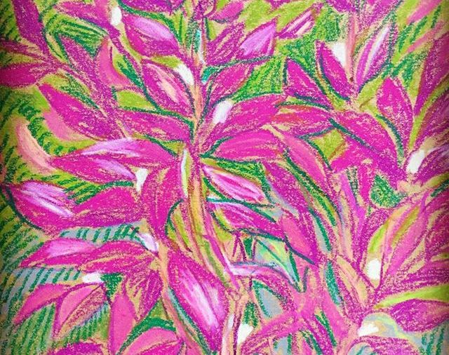 """Purple Leaf Sand Cherry""...that's what it's called, according to my Plant info app... it's pretty enough to draw... Day 345"